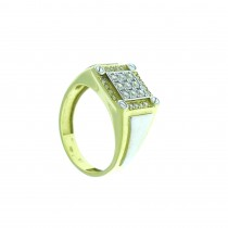 Ring for men, Yellow and white gold, zirconium